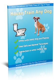 House Train Any Dog Review